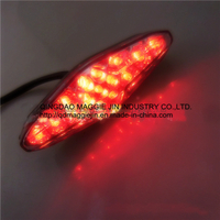 High Quality Motorcycle LED Tail Light, Rear Light, LED Brake Light